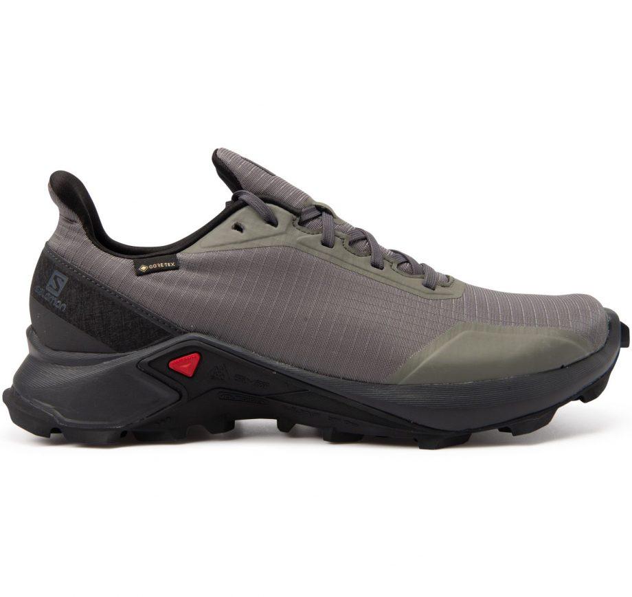 shoes alphacross gtx